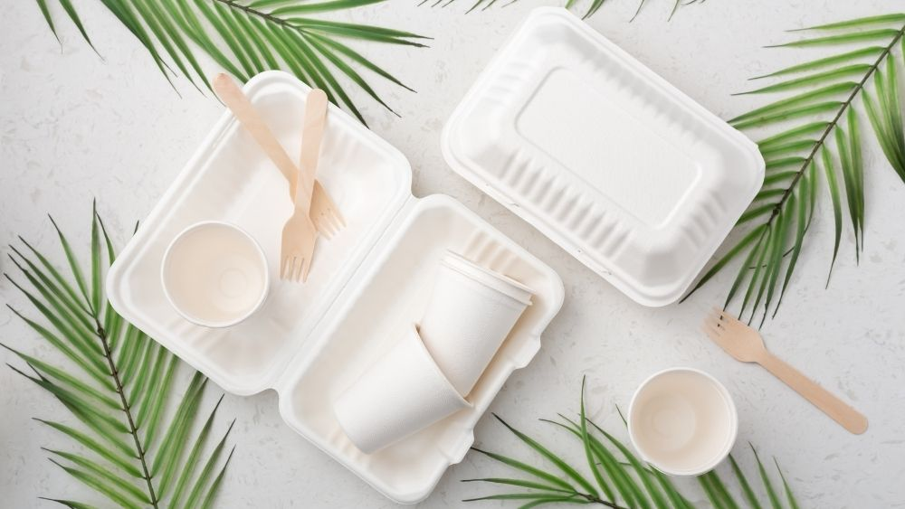 7 Reasons to Switch to Eco-Friendly Food Packaging